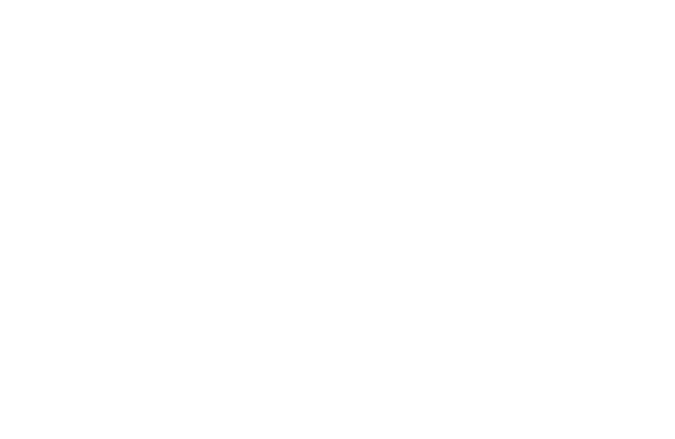 Dekkers Training Logo